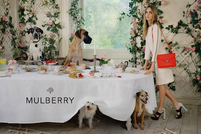 800x533xcara-mulberry-spring-summer-2014-4.jpg.pagespeed.ic.RwMYz97cnF